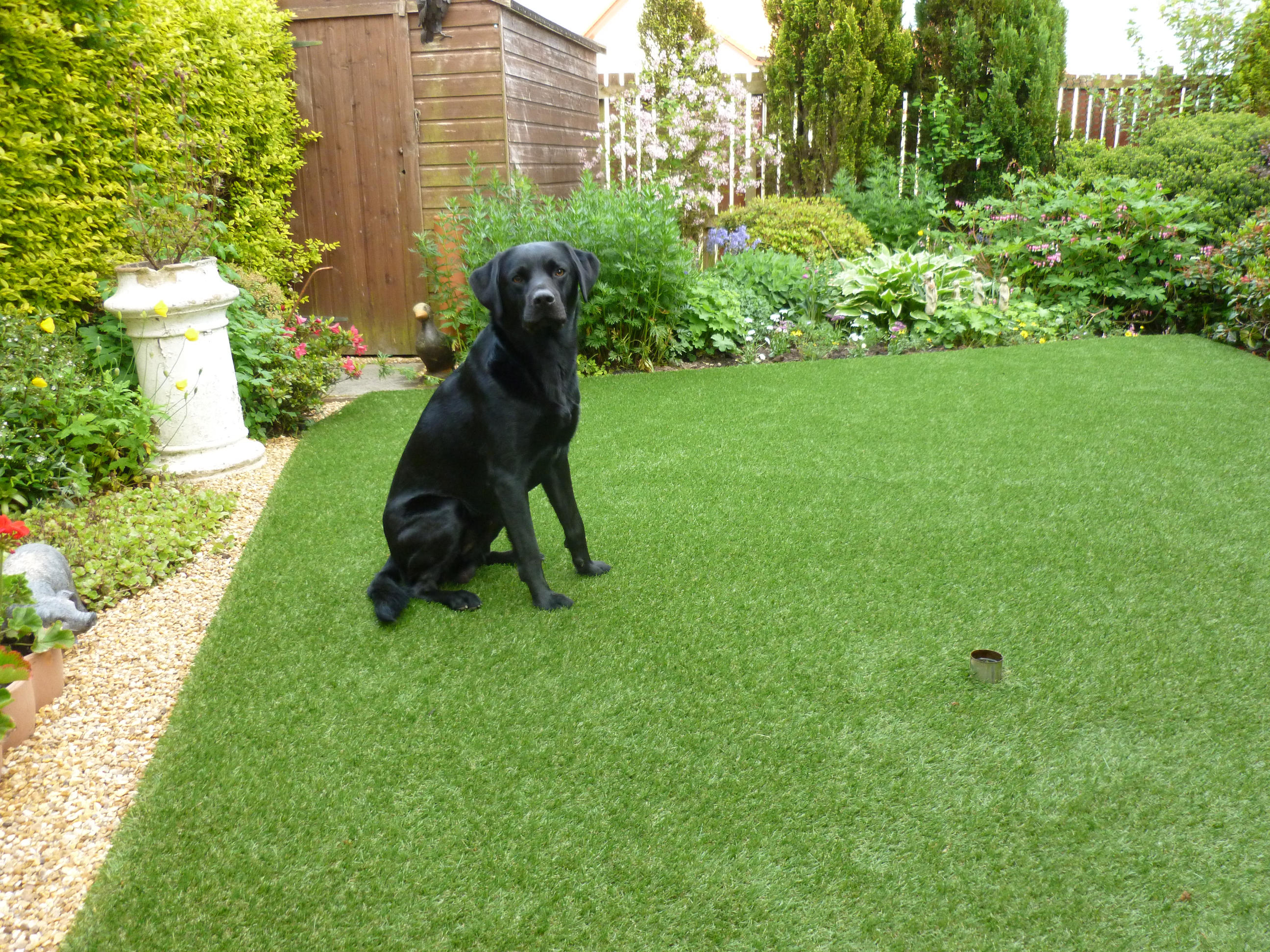 artificial grass For Pets 3