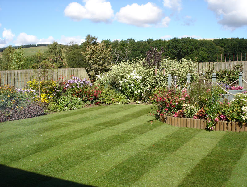 Expert Tips For Looking After Your Lawn This Summer