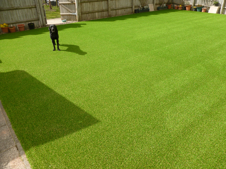 Artificial-Grass-For-Pets