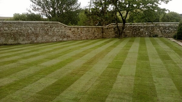 Does Your Garden Need A Makeover – And Should This Include Your Lawn?
