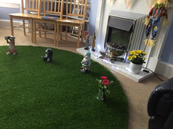 Artificial Grass Inside The Home